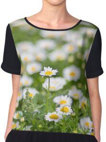 Field of daisy flowers Chiffon Top
