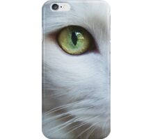 I HAVE LEARNED iPhone Case/Skin