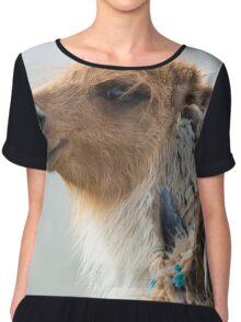 Portrait of beautiful Llama, Argentina Chiffon Top