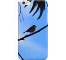 Bird on a Branch iPhone Case/Skin