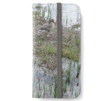 Greylag Geese iPhone Wallet/Case/Skin