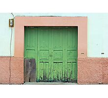 Green Wood Double Doors Photographic Print