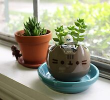 New gardener needed... by emmkaycee