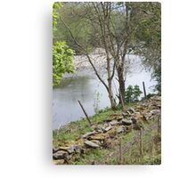 country river Canvas Print