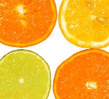 Oranges & Lemons Sticker