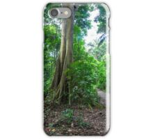 Tropical Rainforest Landscape and trail iPhone Case/Skin