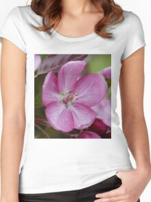 pink apple tree blossoms Women's Fitted Scoop T-Shirt