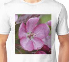 pink apple tree blossoms Unisex T-Shirt