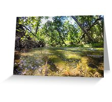 Big Chico Creek Greeting Card