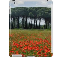 Beautiful Tuscany iPad Case/Skin