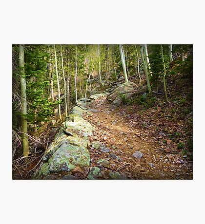 The Narrow Way  Photographic Print
