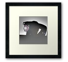 Photographers silhouette Framed Print