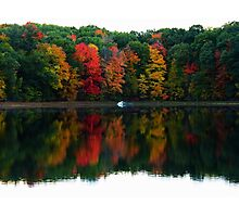 Colors On The Lake Photographic Print