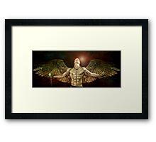 mike angel  Framed Print
