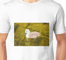 One Cygnet/Baby Swan Paddling Unisex T-Shirt