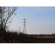 powerlines in a field Photographic Print
