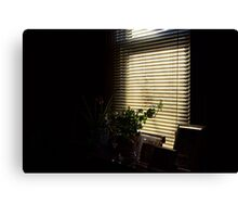 window sill in the morning Canvas Print