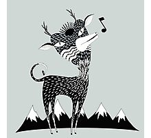 Singing Deer of the Shaggy Mountains Photographic Print