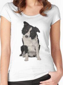 Border Collie Women's Fitted Scoop T-Shirt
