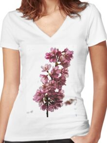 Study in Pink and White Women's Fitted V-Neck T-Shirt