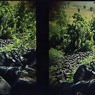 Mount Scoria Diptych by mewalsh