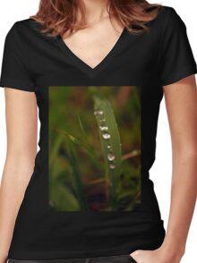 Nature's Diamonds Women's Fitted V-Neck T-Shirt