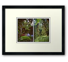 VANCOUVER ISLAND DIPTYCH Framed Print