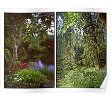 VANCOUVER ISLAND DIPTYCH Poster