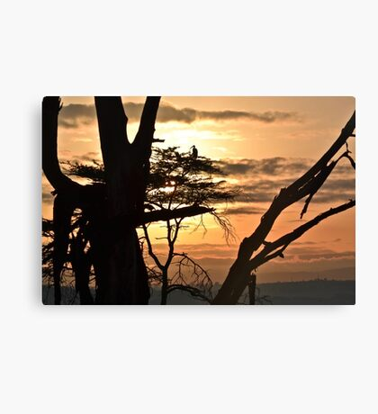 Unspoilt Sunrise Canvas Print