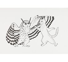 The Owl and the Pussycat Photographic Print