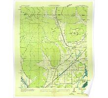 USGS TOPO Map Alabama AL Doran Cove 303696 1936 24000 Poster