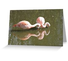 The Contortionists  Greeting Card