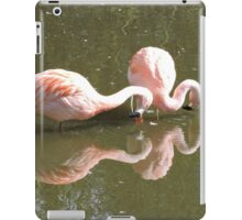 The Contortionists  iPad Case/Skin