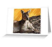 Happy Resting Kanga Greeting Card