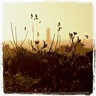 Le Four en herbes by Jean-Luc Rollier
