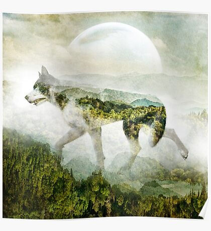 Wolf Mountain Poster