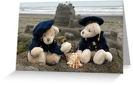 The Beach Boys by Marjorie Wallace