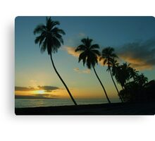 Maui Magic Canvas Print