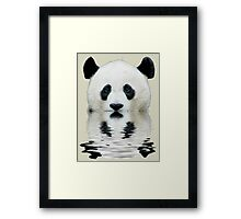Water panda Framed Print