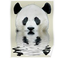 Water panda Poster