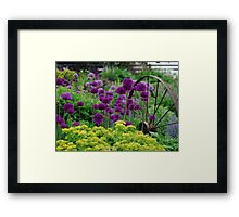 Glorious colours of Spring Framed Print