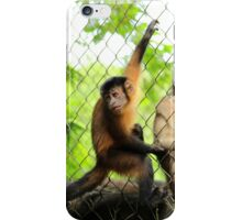 Wild Monkey on a Cage iPhone Case/Skin