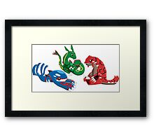 Pokemon - Weather Trio Framed Print
