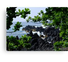 Lava beach in Paradise Canvas Print