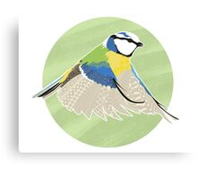 Beautiful British Blue Bird Canvas Print