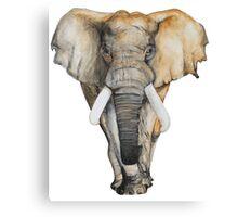Watercolor hand drawn Elephant Canvas Print