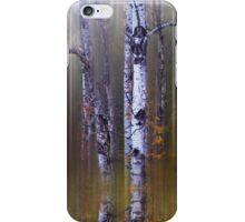Aspen Reflections iPhone Case/Skin