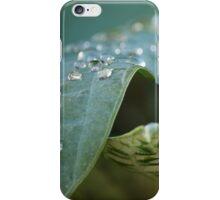 Beaded Blending iPhone Case/Skin