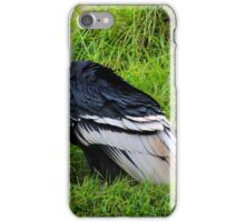 Male Andean Condor on Grass iPhone Case/Skin