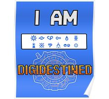 I Am DigiDestined Poster